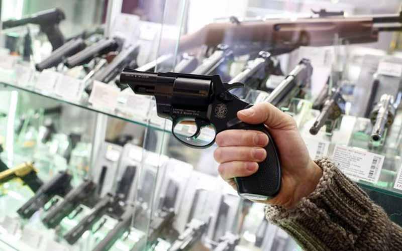 310116 GUNS